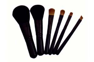 makeup brush set LH6002
